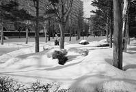 春は名のみの雪のこのごろ - 照片画廊