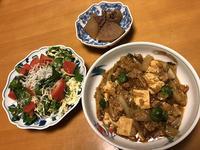麻婆白菜豆腐と、ルッコラとしらすのサラダと、大根煮、それにお味噌汁 - かやうにさふらふ