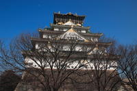 大阪城 - 平凡な日々の中で