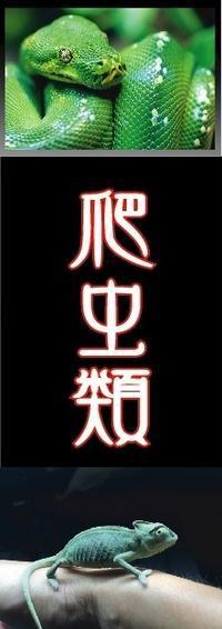 2/5店長日記 - 形山水族館「店長のひまつぶし」