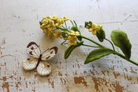 ナノハナとモンシロチョウ~立体刺繍の花と蝶々~ - フェルタート(R)・オフフープ(R)立体刺繍作家PieniSieniのブログ