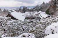 雪の滋賀2021百済寺・庭園編 - 花景色-K.W.C. PhotoBlog