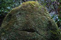 聖闘士星矢 THE LOST CANVAS 冥王神話(Ep148~151) - - 光景彡z工房 - ◇ SeasonⅢ ◇