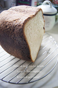 おうちぱん~フェンネルとチーズのパン。 - *Romantic caramel-香草菓子や粉と卵とおうちおやつ*