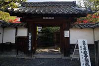 2020京都の紅葉・花園妙心寺塔頭桂春院 - デジタルな鍛冶屋の写真歩記