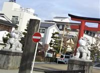 Daily notes : 2021年1月~2月、鎌倉駅界隈 - al mare 気ままにmamma (たまにnonna)