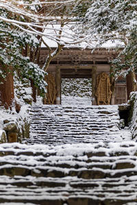 雪の滋賀2021百済寺・本堂編 - 花景色-K.W.C. PhotoBlog