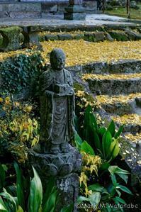常楽寺-石像 - Mark.M.Watanabeの熊本撮影紀行
