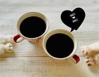 mamaごとなペットちゃんと一緒に・・・caféタイム♪ - MaMan Marché ***mamaごとなおうちcaféのアトリエ時間***