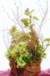 細い枝物でコンポジションは難しいけど美しい - お花に囲まれて