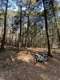 シェイクダウンで出来ること。 - 東京都世田谷 マウンテンバイク&BMXの小川輪業日記