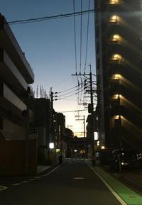 夕暮れ電線 - 設計通信2 / 気になるカメラ、気まぐれカメラ