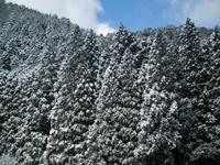 針畑雪とかんじき - 朽木小川より 「itiのデジカメ日記」 高島市の奥山・針畑からフォトエッセイ