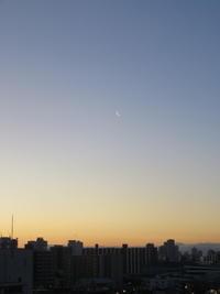 今朝のお月様と花 - おうちやさい