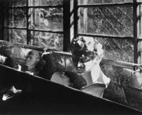 80年代夕張152・東山中学 - 萩原義弘のすかぶら写真日記
