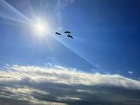 ラバウル 遥かなり(前編)B25 vs 零戦 - 回れプロペラ!  Rotate Propeller!