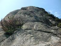 小豆島クライミング①小豆島のインスボン - ちゃおべん丸の徒然登攀日記