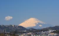 1月30日 ③ 『自宅から90km先の富士 2021』 - 写愛館