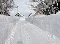 自邸の積雪状況2021/3 - 『文化』を勝手に語る