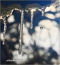 1月の大雪の日 - 今が一番