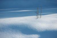Winter Blue '21  #2 - 但馬・写真日和