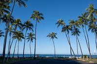 ハワイイ紀行-16- - Photo Terrace