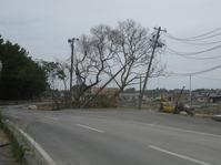 まもなく10年が巡りくる~東日本大震災から、9年11か月。 - タビノイロドリ