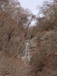 再訪 粕川滝沢の不動滝(1) (2021/2/9撮影) - toshiさんのお気楽ブログ