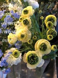 張り切って……… -  Flower and cafe 花空間 ivory (アイボリー)