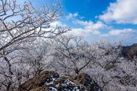 寒気 - 撃沈風景写真
