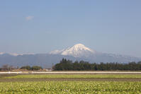 冬の琵琶湖雪の伊吹山 - 京都ときどき沖縄ところにより気まぐれ
