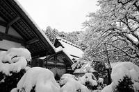 雪景色@京北町常照皇寺・其の二 - デジタルな鍛冶屋の写真歩記