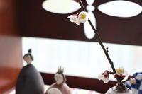 今年も健やかな成長を願って、小さなおひな様飾りました - キラキラのある日々