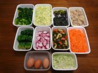2021/2/14常備菜(豚肉とじゃがいもの梅しょうが炒めなど) - お弁当と春の空