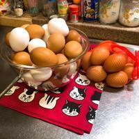 たまご♪ 卵♬ タマゴ協奏曲 - 仕事・子育て・家事のテンコ盛り生活