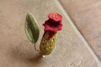 ウツボカズラのオフフープ立体刺繍完成しました - フェルタート(R)・オフフープ(R)立体刺繍作家PieniSieniのブログ