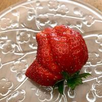 ☆この苺、手の形・指の数も…☆ - ガジャのねーさんの  空をみあげて☆ Hazle cucu ☆
