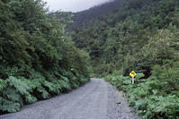 Carretera Austral(アウストラル街道)走行記その11 - Bicycle Touring Photo Gallery.