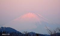 1月31日  『自宅から90km先の富士 2021』 - 写愛館