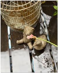 雨のベランダ - 小さな庭 2