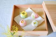 春の和菓子 - Chamomile 季節のおやつと日々のこと