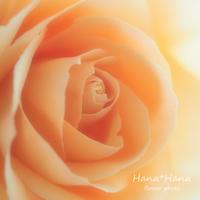 *バラ* - HANA*HANA