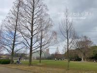 休日さんぽ【平和公園】 - yamatoのひとりごと