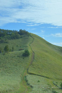 2020年のキオク・10月の山歩き⑨**優しい頂へ - きまぐれ*風音・・kanon・・