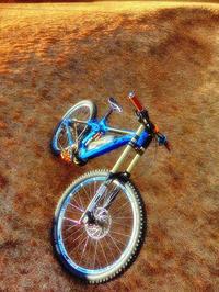 MERIDA eONE-SIXTY no limited edition XI - www.k-bros.org