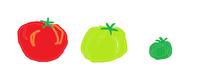 家庭菜園・トマトの悲劇 - 幸せを育む家☆間取りで失敗しない!