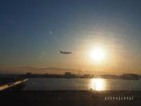 2020.2 沖縄Ⅰ 機内から見た空 - Green Floral