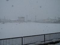 頻回除雪のお疲れ休日。 - タビノイロドリ