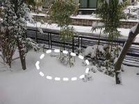 雪がかなり降ったふきのとうも隠れてしまった - ざっかラボ九隆庵 創作事情