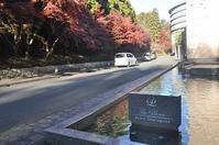 ザ・プリンス京都 宝ヶ池@京都 - a&kashの時間。